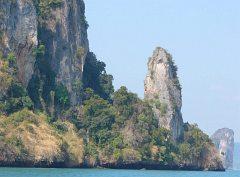 Niedostepne skały i bujna roślinność to królestwo ptaków